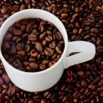 コーヒー豆の味は何で決まるの?