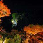 千葉で紅葉狩りできるおすすめスポット5選!見頃は?